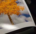 8 Mil Print Perfect Gloss Photo Paper Plus